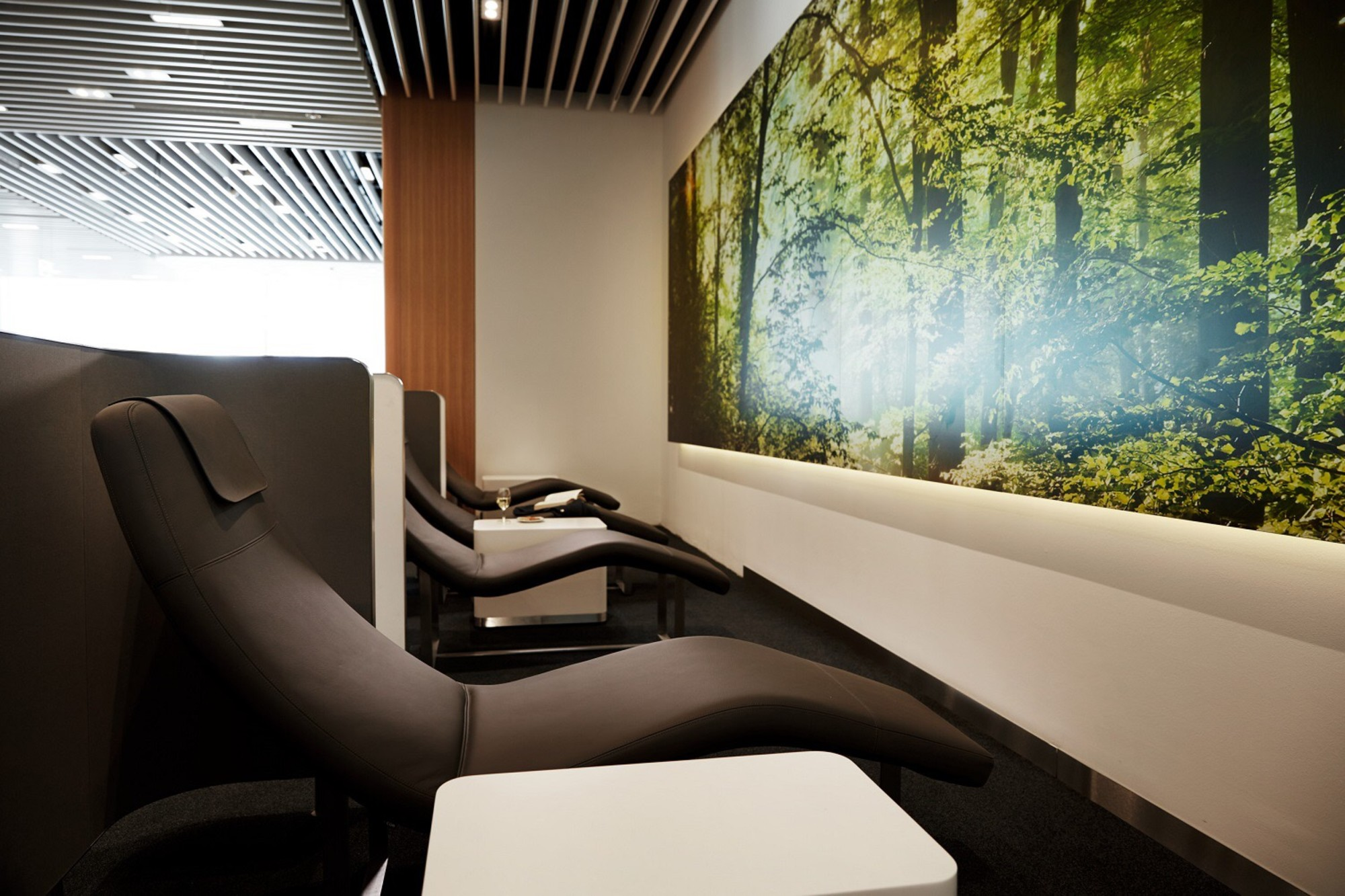 Lufthansa Business Lounge (Non Schengen)