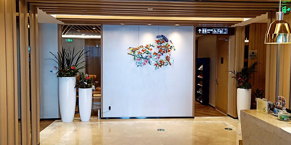 Shenzhen Airport First Class Lounge (Joyee 3) (SZX)