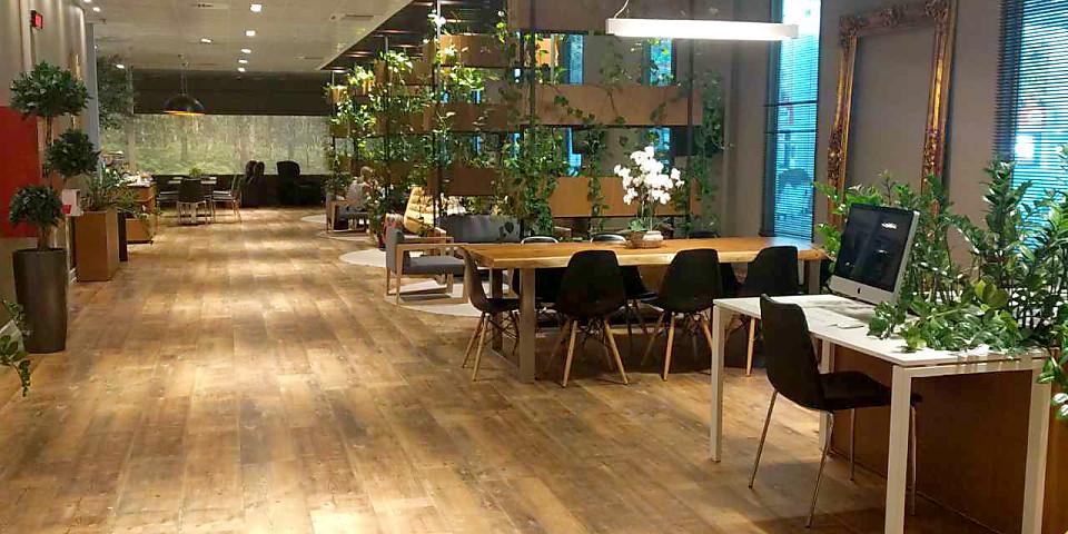 Business Lounge (TIA)