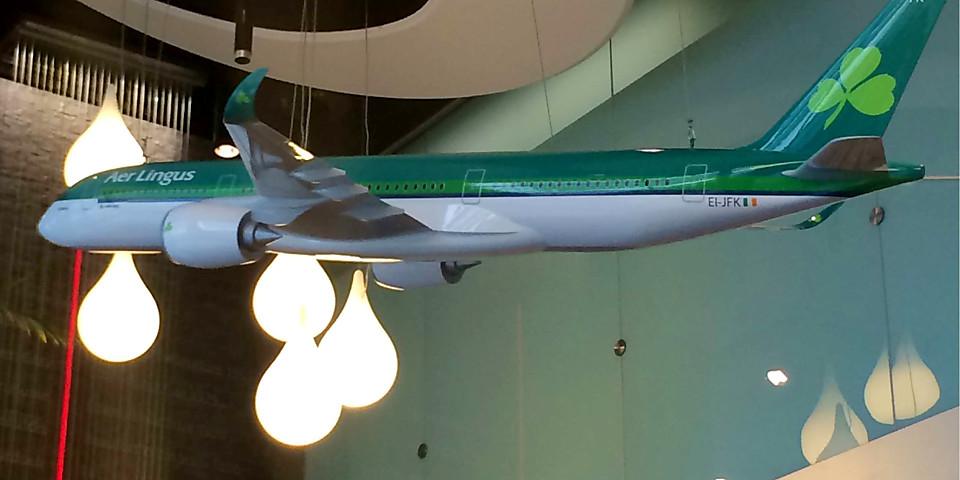 Aer Lingus Lounge (DUB)
