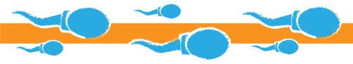 Spermiumok - Testembe estem | LoveInfo