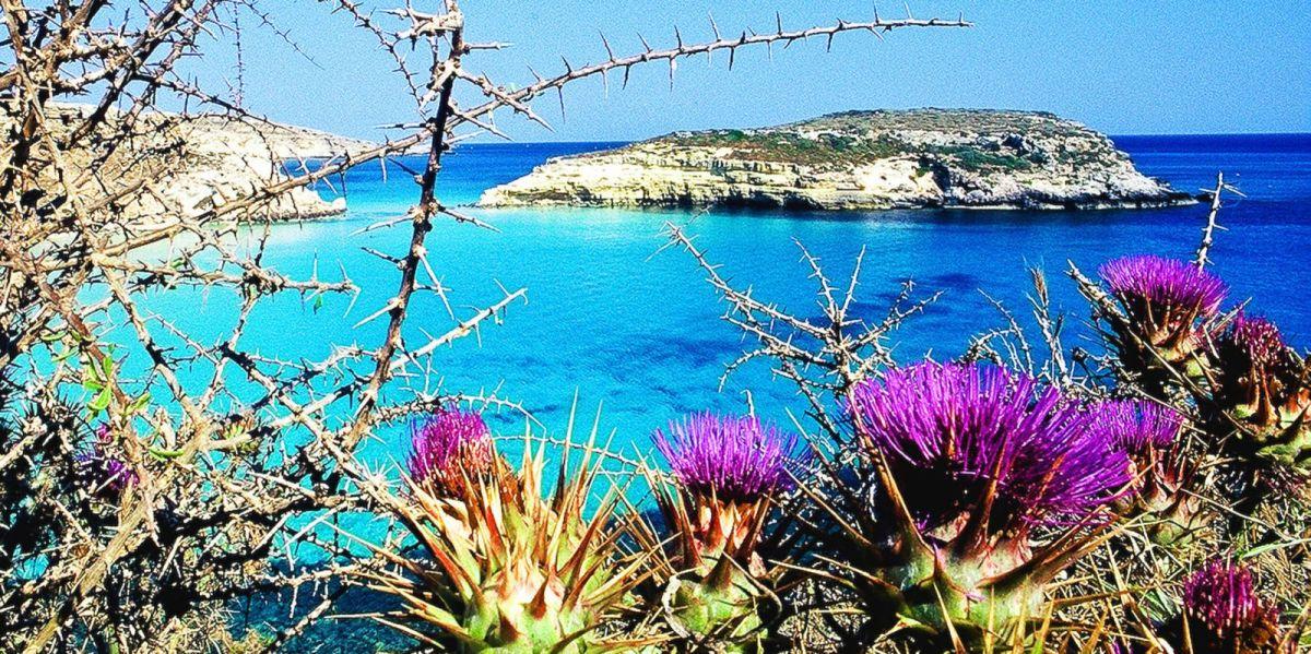 Lampedusa - Instagram