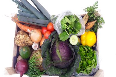 Veggie & Salad Combi Box