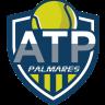 ATP - PALMARES
