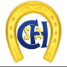 2º Etapa - Clube Hipico de Sto Amaro - Masc 2º Classe