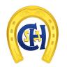 Etapa Clube Hípico Santo Amaro II - 1M35+
