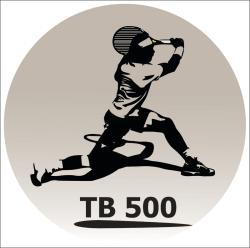 2020 - TB 500