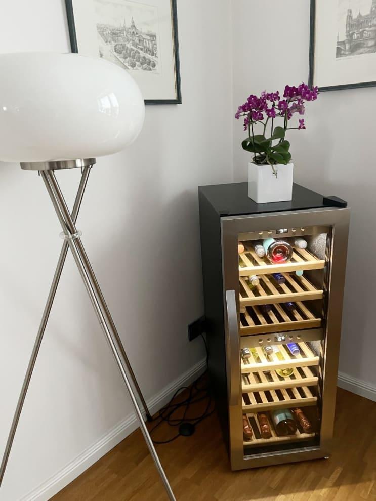Freistehender Weinkühlschrank - WineExpert 38 Stainless