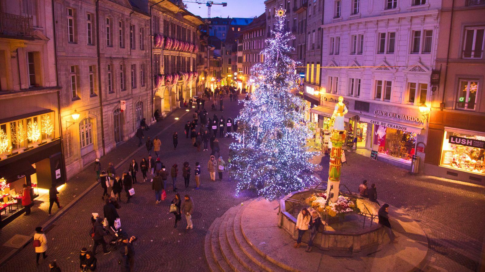 Le sapin géant de la Palud – Lausanne Tourisme – Site officiel du tourisme  à Lausanne