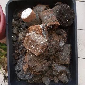 Mixed used potting soil in a shallow container.