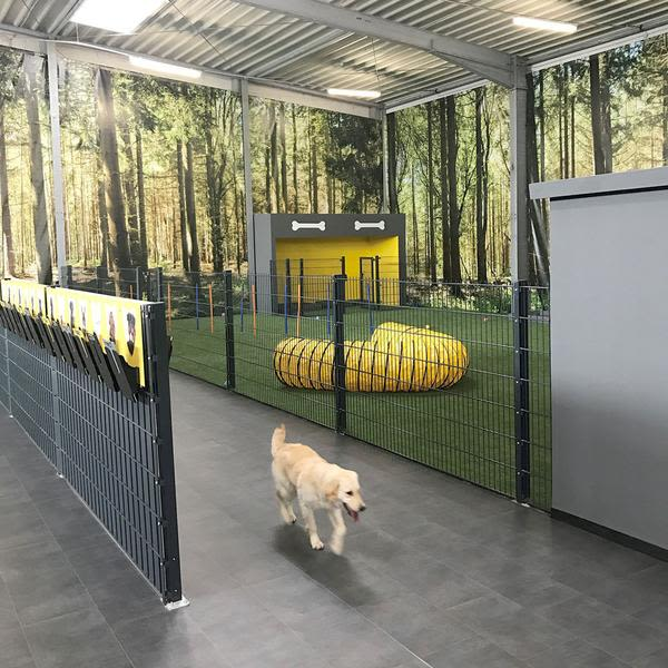 BELLOMANIA DOG RESORT 2