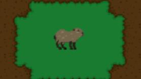 Capivara no bio Zoo