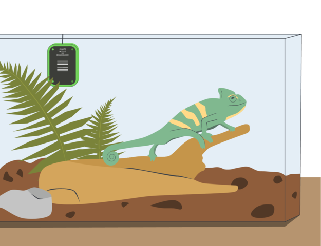IoT project: Terrarium guard for iguana and other reptiles