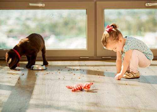 little girl and puppy eating cereal off the vinyl splash-proof floor