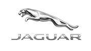 Our Customer Jaguar