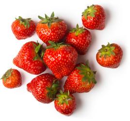 イチゴ果実