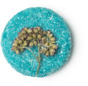 Slaphead é um champô sólido azul com uma flor no meio com manteiga de cacau e aveia para uma careca ou couro cabeludo saudável