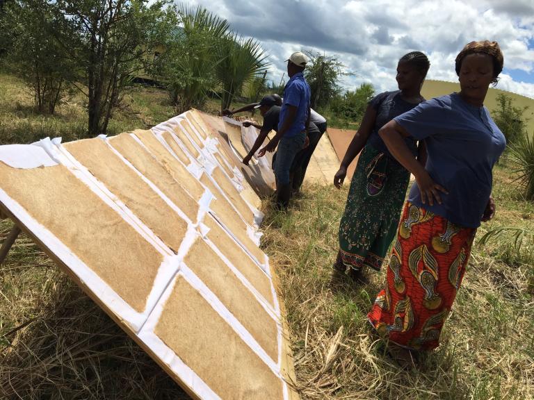 Banana fibre sheets drying in Zambia