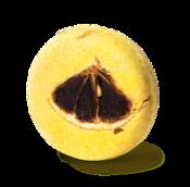 champú sólido zero waste de color amarillo y redondo Montalbano con zumo de limón para aportar brillo