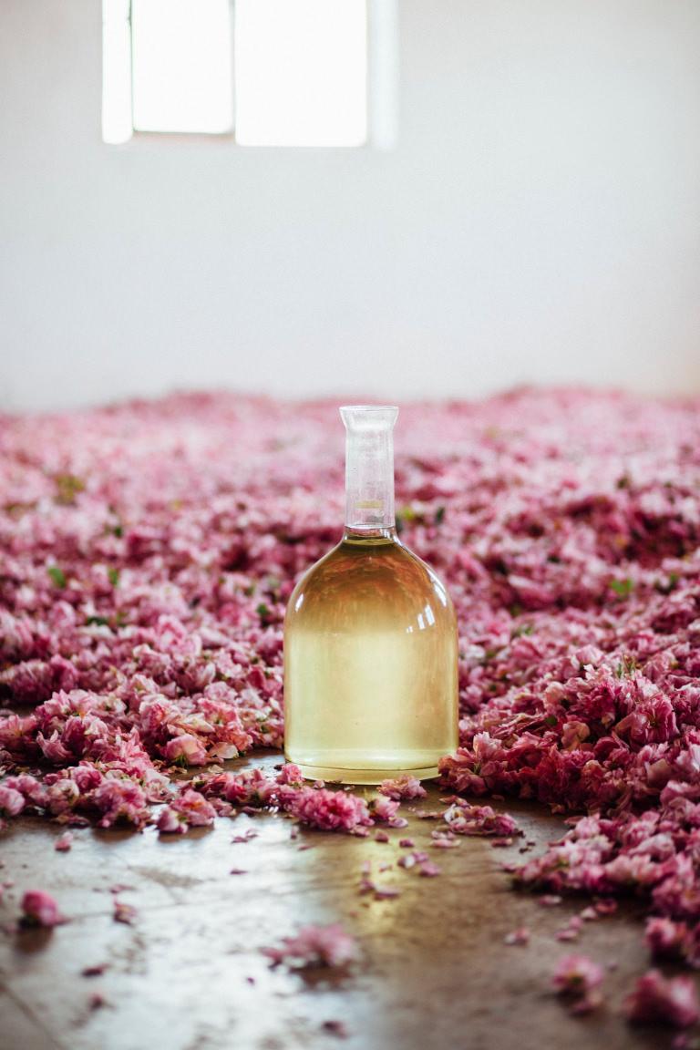 Choosing perfume through ingredients