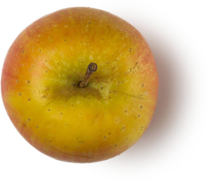 A red and brown apple