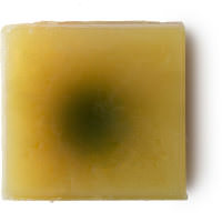 Sunflower by Lush