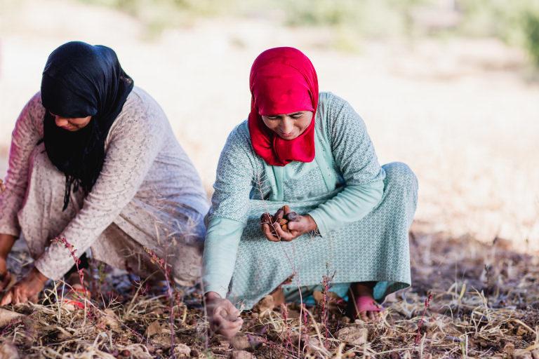 arganolie vrouwen coöperatie Marokko