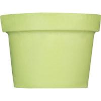 Pastellgrüne, feste Körpercreme
