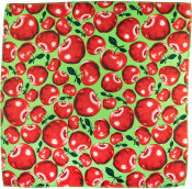 apple themed valentines day knot wrap