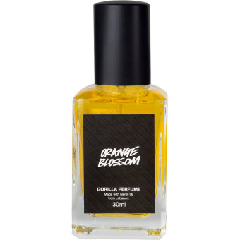 orange blossom lush labs perfume