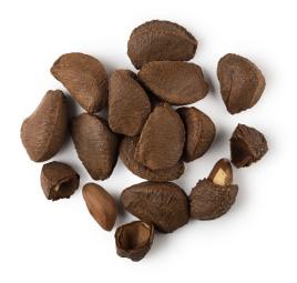 brazil-nuts