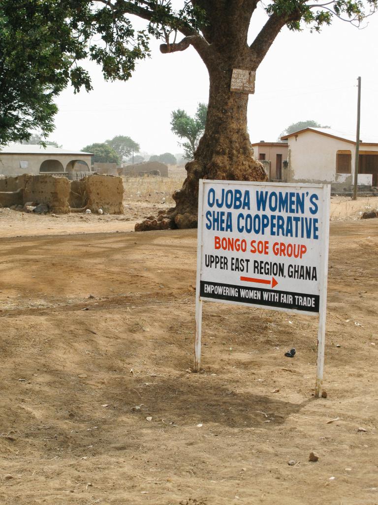 Ojoba Women's Shea Cooperate