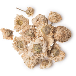 Dried Roman Chamomile