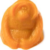 steve the orangutan sos