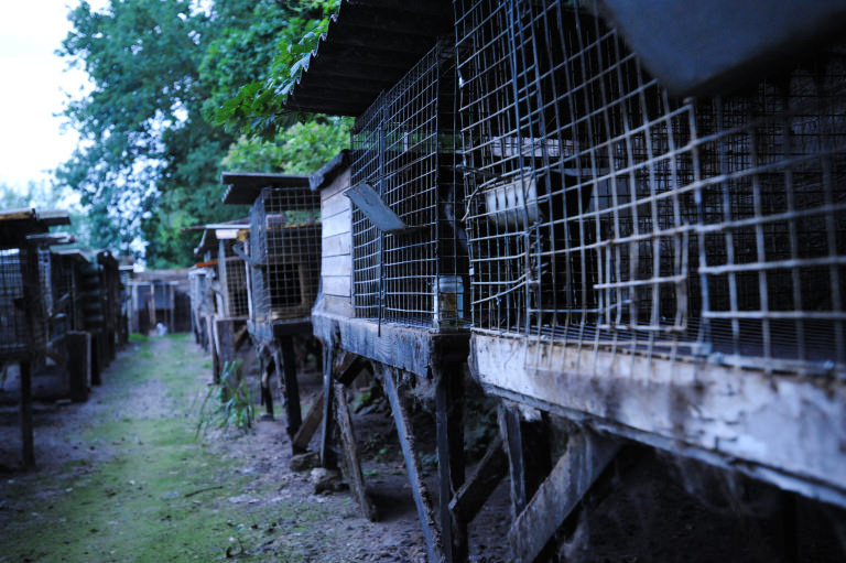Fur farm cages
