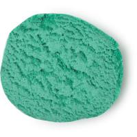 Kreisrunder Querschnitt vom grünen Fun Holly