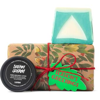 caixa marrom embrulhada com padrão de plantas com tema natalino e produtos ao redor
