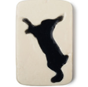 fighting animal testing soap