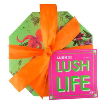 Lush Life_topdown