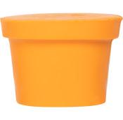 Bucks fizz é um dos condicionadores de corpo sólidos de natal laranja sem pote e um aroma frutado