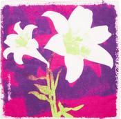 Pinkes Tuch mit weißen Lilien