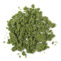 Herbalism limpiador facial y corporal sin jabón de color verde con ortiga y romero para limpiar e eliminar suciedad y grasa de la piel