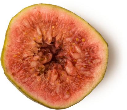 Fig cut in half