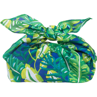 web little green bag gift knotwrap