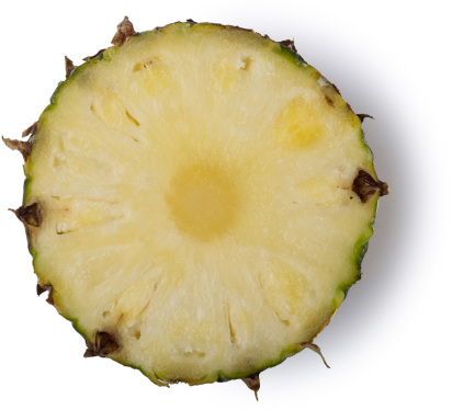 Slice of a pineapple
