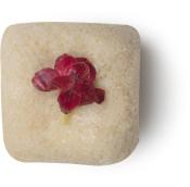 Murumuru On The Wall - Lush Fresh Flowers