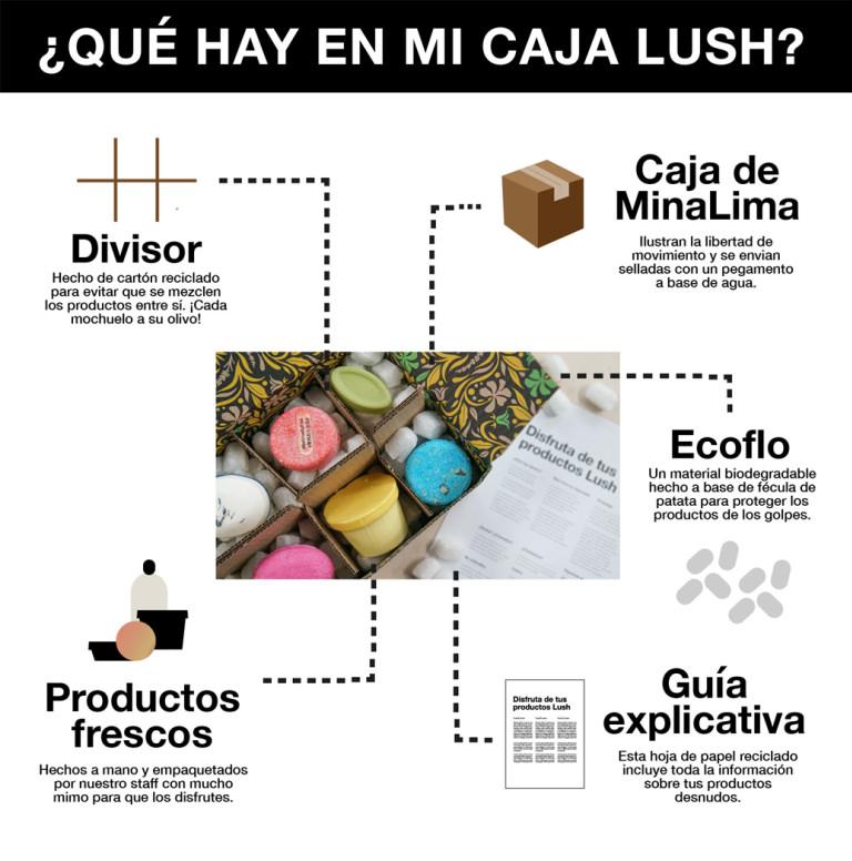 Infografia qué hay en tu pedido Lush