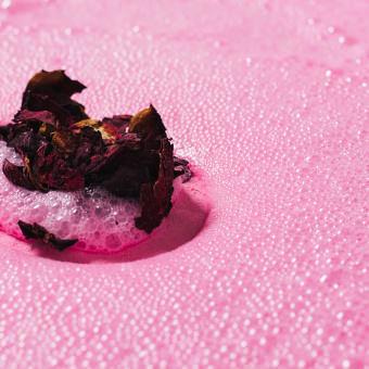 Die Rose Bombshell Ei Badebombe löst sich sprudelnd im Wasser auf
