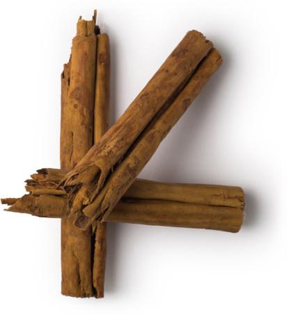 ingrédient lush - huile essentielle d'écorce de cannelle