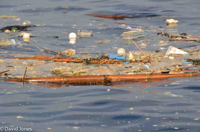 Plastic pollution in Sri Lanka - David Jones